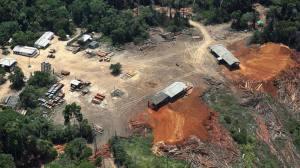 O governo adiou a divulgação dos novos números do desmatamento na Amazônia para depois das eleições, alimentando suspeitas de que os resultados não são bons. Em 2013, segundo os últimos dados, a derrubada de florestas voltou a crescer após uma década em queda. Uma nova denúncia, feita pelo grupo ambientalista Greenpeace, reforça essa ideia.